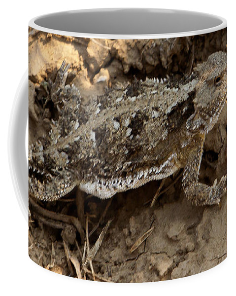 Lizard Coffee Mug featuring the photograph Horned Lizard  #8888 by J L Woody Wooden