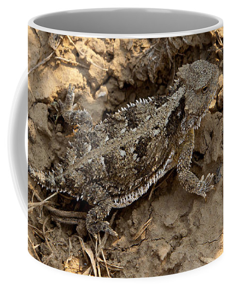 Lizard Coffee Mug featuring the photograph Horned Lizard  #8903 by J L Woody Wooden