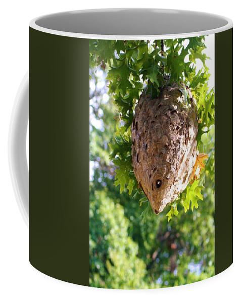 Hornets Coffee Mug featuring the photograph Hornets Nest by Karen Silvestri