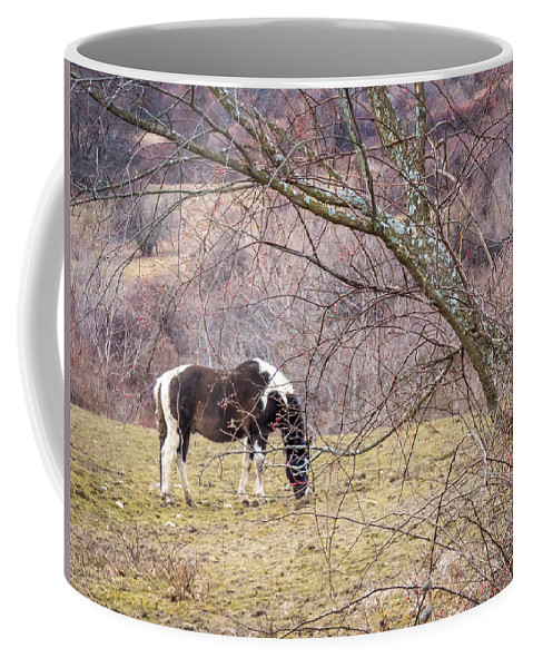 Winter Coffee Mug featuring the photograph Horse And Winter Berries by DAC Photo