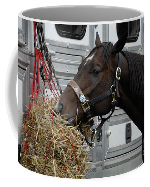 Bridle Coffee Mug featuring the photograph Horse Eating Hay by Amy Cicconi