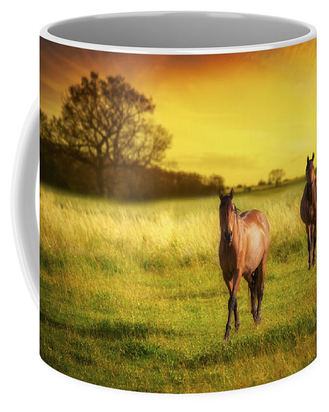 Horse Coffee Mug featuring the photograph Horses At Sunset by Amanda Elwell