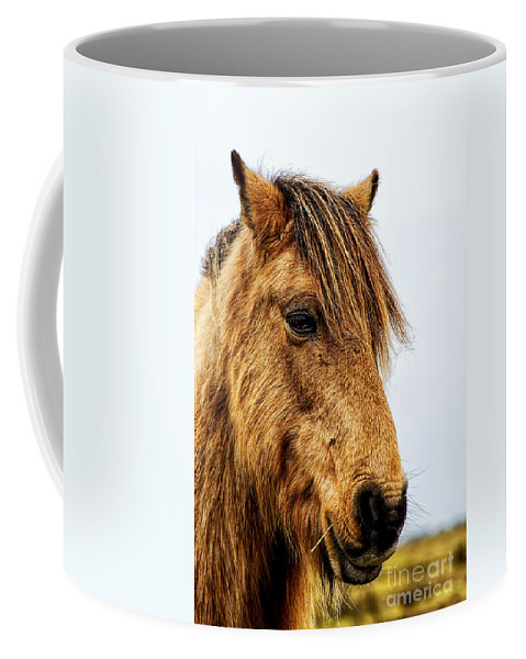 Horse Canvas Coffee Mug featuring the photograph Horses Head by Chris Thaxter