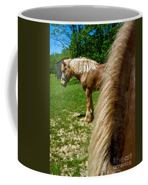 Animal Coffee Mug featuring the photograph Horses In Meadow by Amy Cicconi