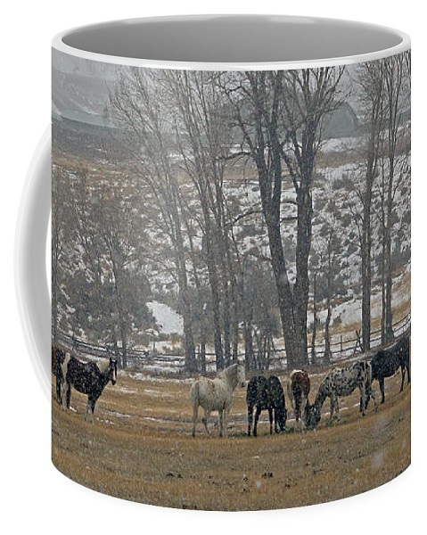 Horses Coffee Mug featuring the photograph Horses In The Snow  #7940 by J L Woody Wooden