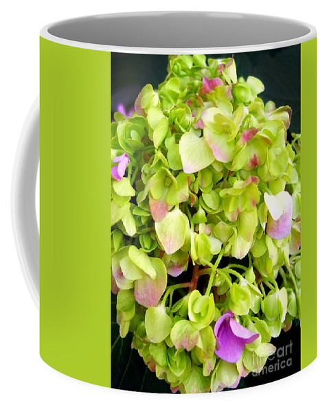 Hortensia Coffee Mug featuring the photograph Hortensia With Touch Of Pink by Nina Ficur Feenan
