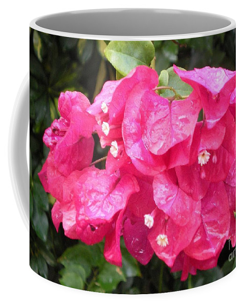 Flower Coffee Mug featuring the photograph Hot Pink Bougainvillea by Graciela Castro