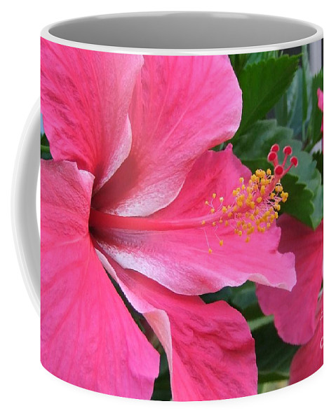 Pink Coffee Mug featuring the photograph Hot Pink Hibiscus 2 by Mary Deal