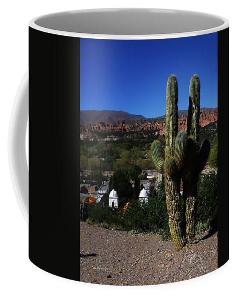 Saguaro Coffee Mug featuring the photograph Humahuaca Argentina 2 by Xueling Zou