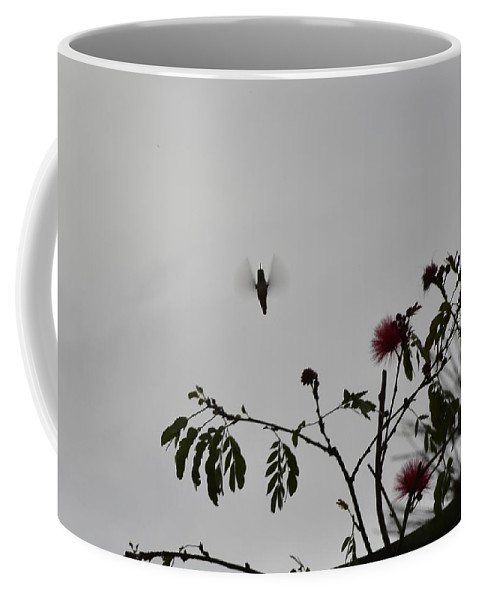 Linda Brody Coffee Mug featuring the photograph Hummingbird Silhouette I by Linda Brody