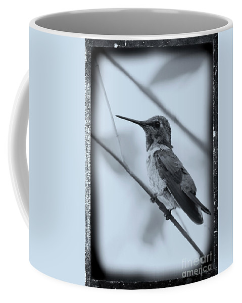 Hummingbird Coffee Mug featuring the photograph Hummingbird With Old-fashioned Frame 1 by Carol Groenen