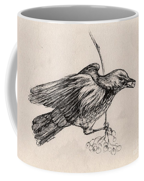 Thrush Coffee Mug featuring the drawing Hungry Thrush 2 by Angel Ciesniarska