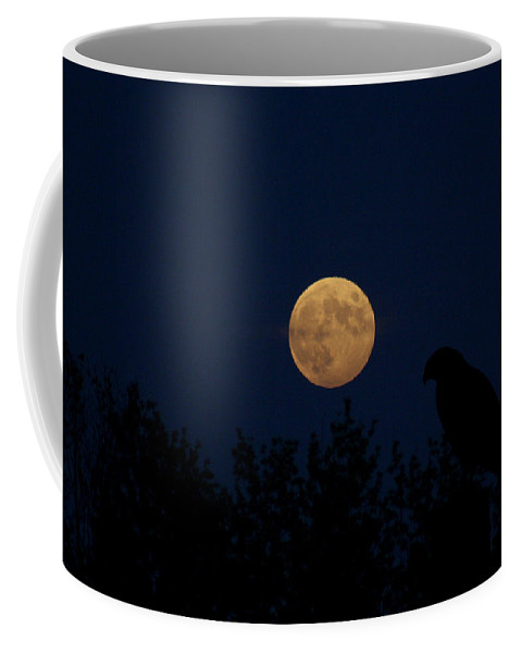 Moon Coffee Mug featuring the photograph Hunters Moon by Dan McCafferty