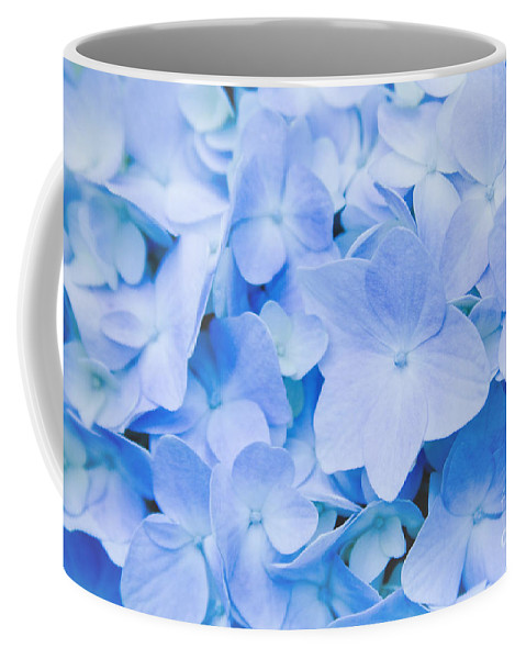 Hydrangea Coffee Mug featuring the photograph Hydrangea Macrophylla by Sharon Mau