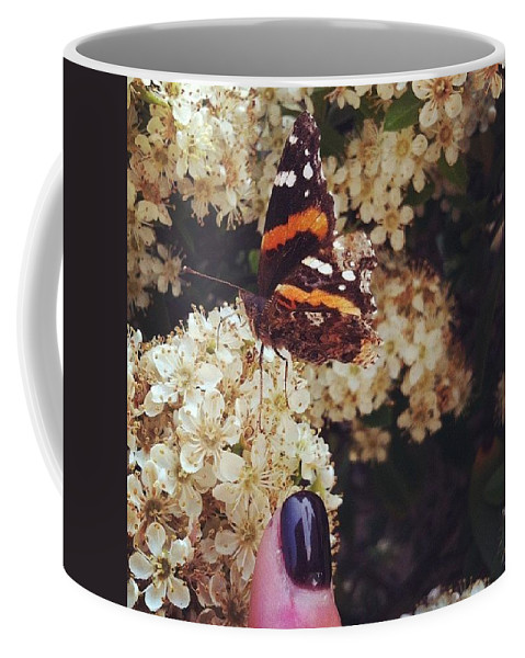 Butterfly Coffee Mug featuring the photograph I Made A Buddy. But Only Because He Was by Katie Cupcakes