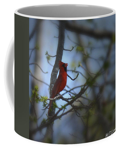 I Want To Sing A Song To You Lord Coffee Mug featuring the photograph I Want To Sing A Song To You Lord by Maria Urso