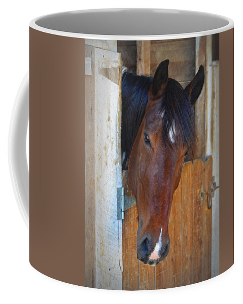 Horse Coffee Mug featuring the photograph I Was Waiting For You by Sandi OReilly