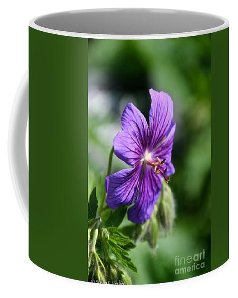 Flower Coffee Mug featuring the photograph Iberian Geranium by Susan Herber