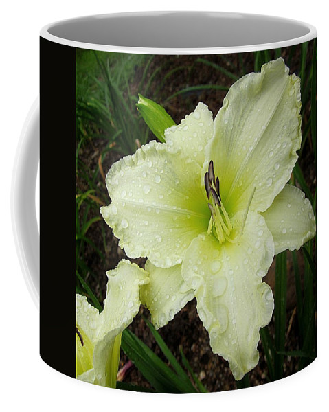 Daylily Coffee Mug featuring the photograph Ice Carnival Daylily by MTBobbins Photography