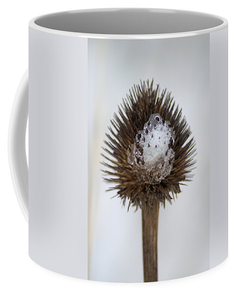 Bloom Coffee Mug featuring the photograph Ice Cone by Bonfire Photography