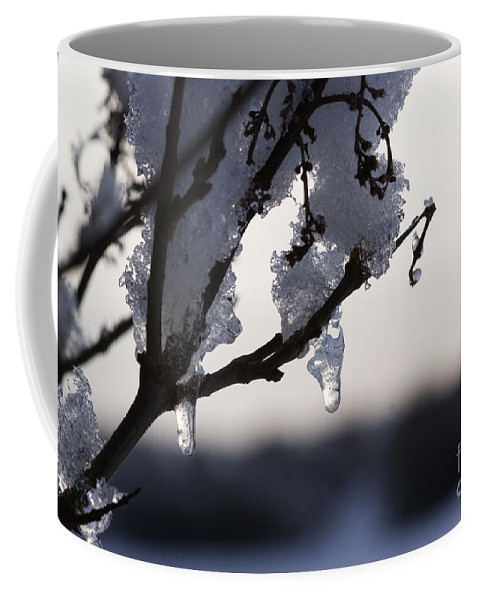 Snow Coffee Mug featuring the photograph Ice Drop by Carol Lynch