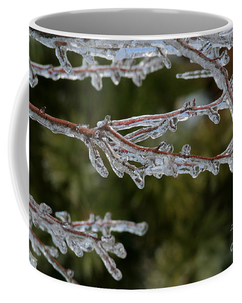 Ice Coffee Mug featuring the photograph Icy Branch-7482 by Gary Gingrich Galleries