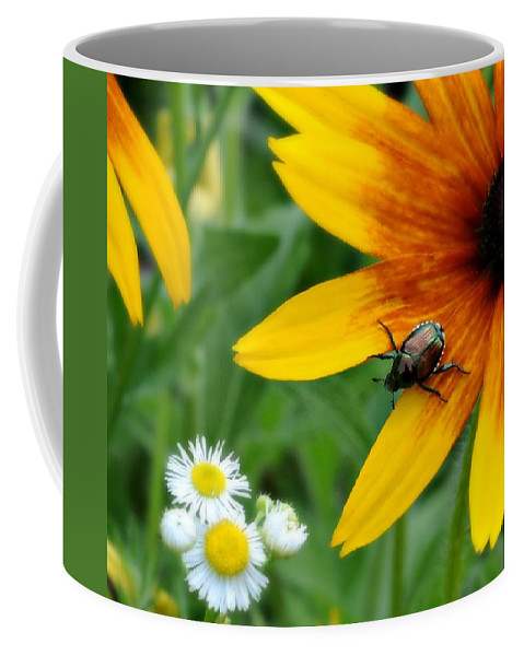 Flowers Coffee Mug featuring the photograph I'd Like To Get To Know You by Diana Angstadt