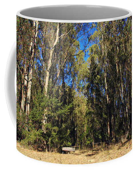 Tilden Park Coffee Mug featuring the photograph I'm So Small by Laurie Search