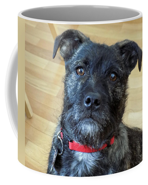 Dogs Coffee Mug featuring the photograph Impatient by William Tasker