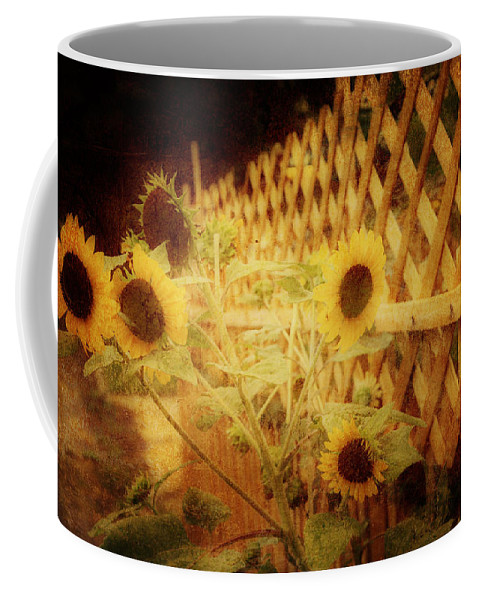 Sunflowers Coffee Mug featuring the photograph Sunflowers And Lattice by Toni Hopper