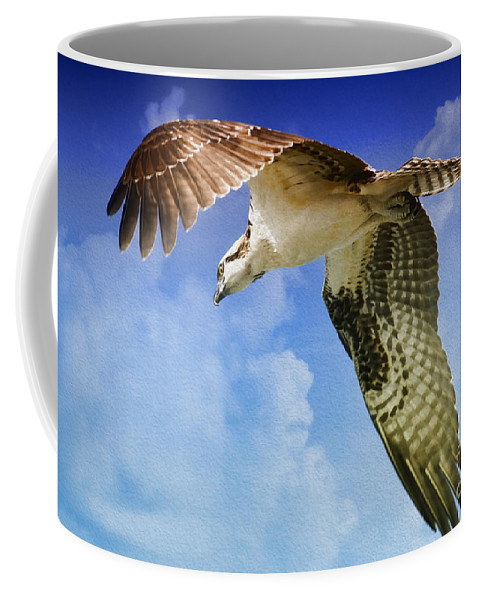 Osprey Coffee Mug featuring the photograph In Search Of by Deborah Benoit