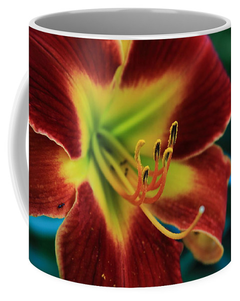 Reid Callaway Flower Coffee Mug featuring the photograph In The Ant's Eye by Reid Callaway