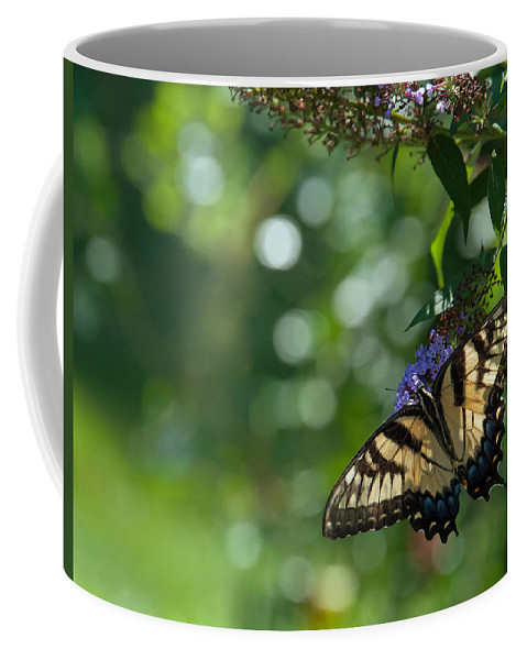 Butterfly Coffee Mug featuring the photograph In The Garden II by Mary OMalley