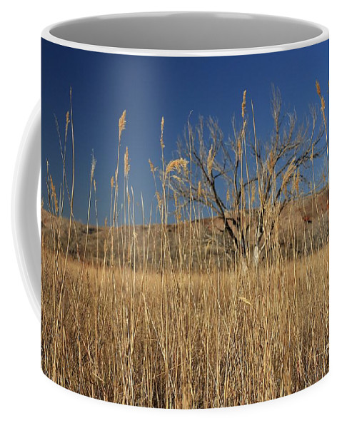 Texas Coffee Mug featuring the photograph In The Grass by Ashley M Conger