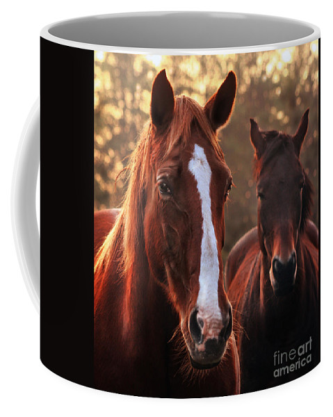 Sunset Coffee Mug featuring the photograph In The Last Rays Of The Sun by Angel Ciesniarska