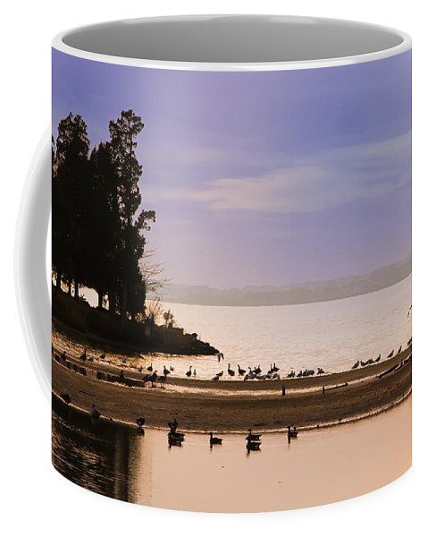 In The Quiet Morning Coffee Mug featuring the photograph In The Quiet Morning by Bill Cannon