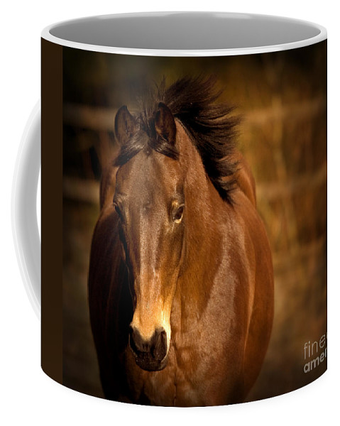 Horse Coffee Mug featuring the photograph In The Sepia by Angel Ciesniarska