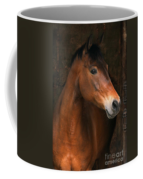 Horse Coffee Mug featuring the photograph In The Stable by Angel Ciesniarska