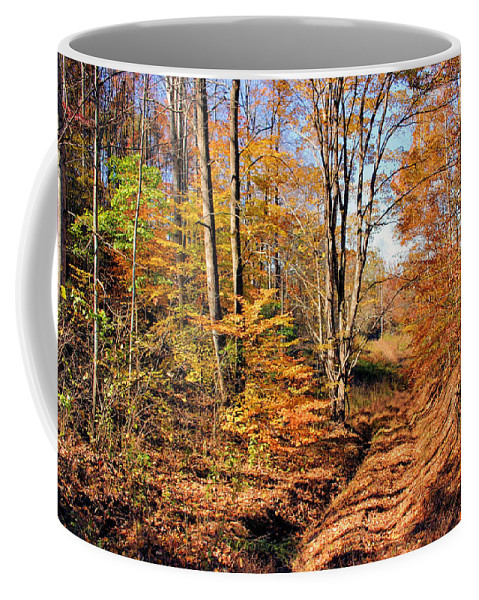 In The Woods Coffee Mug featuring the photograph In The Woods by Kristin Elmquist