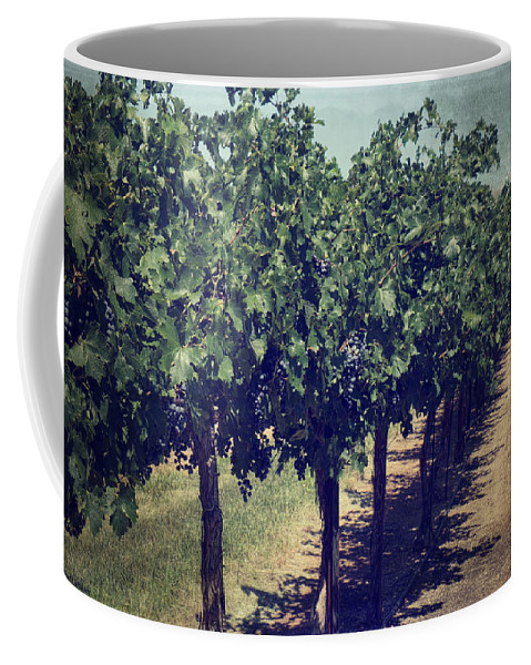 Wine Coffee Mug featuring the photograph In Time by Lucinda Walter