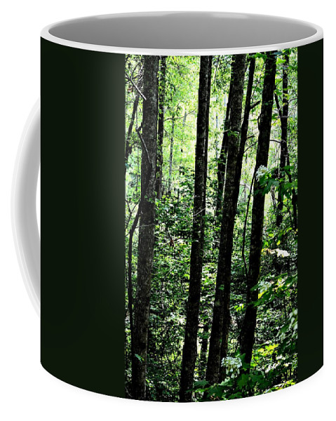In Touch With Creation Coffee Mug featuring the photograph In Touch With Creation by Maria Urso