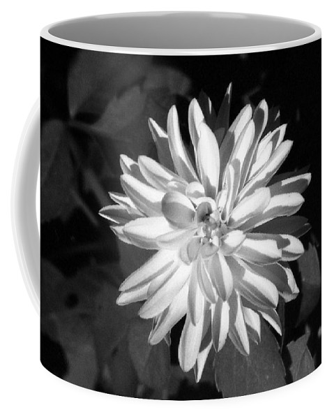 Flower Coffee Mug featuring the photograph Infrared - Flower 03 by Pamela Critchlow
