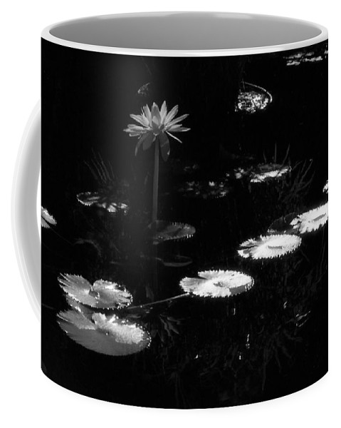 Water Lily Coffee Mug featuring the photograph Infrared - Water Lily And Lily Pads by Pamela Critchlow