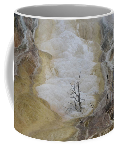 Innundated Coffee Mug featuring the photograph Innundated by Brian Boyle