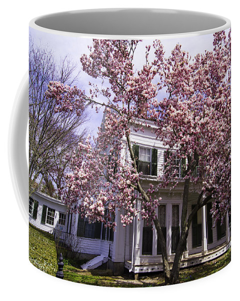 Spring Coffee Mug featuring the photograph Into Spring by Joe Geraci