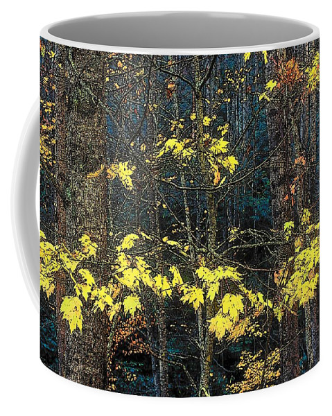 Digital Art Coffee Mug featuring the photograph Into The Fall by Rodney Lee Williams