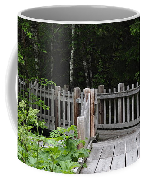 Boardwalk Coffee Mug featuring the photograph Into The Forest by Cathy Mahnke
