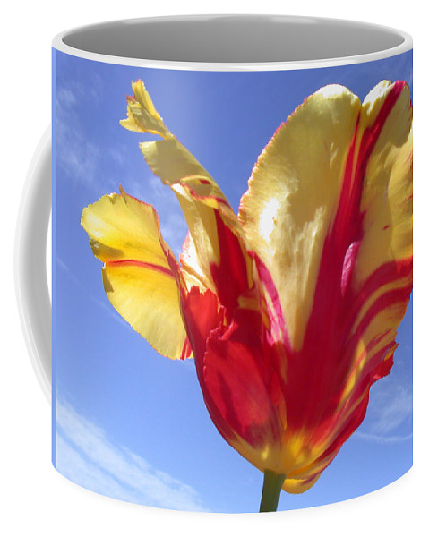 Tulip Coffee Mug featuring the photograph Into The Sky by Shane Bechler