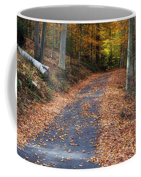 Autumn Coffee Mug featuring the photograph Into The Woods by Geoff Crego