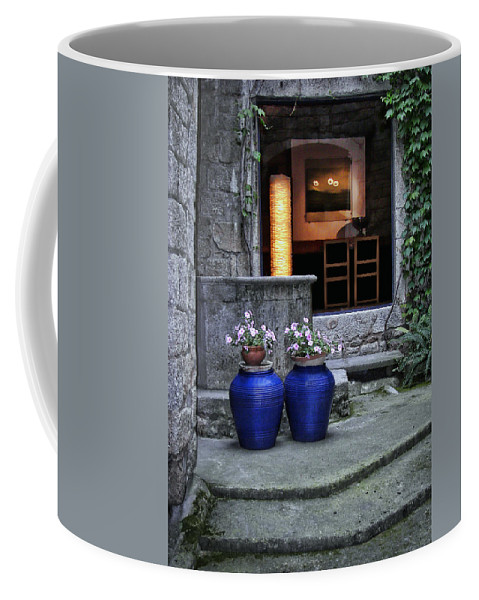 Exterior Coffee Mug featuring the photograph Invitation by Nikolyn McDonald
